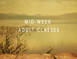 web event small-mid-week classes