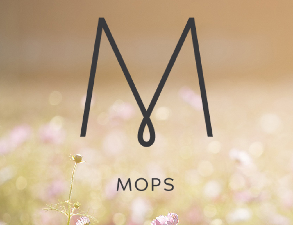 web-bottom event-MOPS